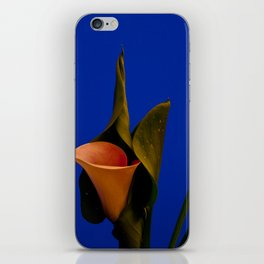Calla lily on blue iPhone Skin