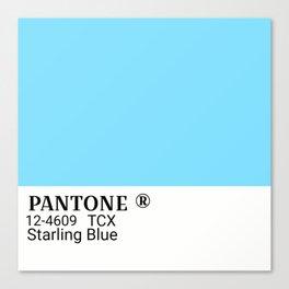 Pantone starling blue Canvas Print