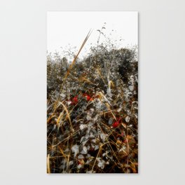 The Cold Heart of February Canvas Print