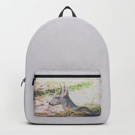 Mariposa Shadow Backpack