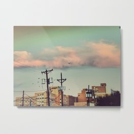 315 | west texas Metal Print