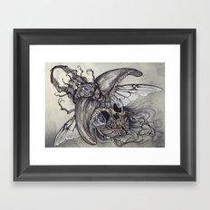 Memento Lucanidae Framed Art Print
