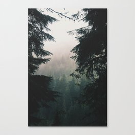 Forest IV Canvas Print