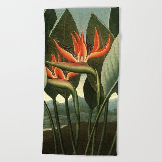 Birds of Paradise : Temple of Flora Beach Towel