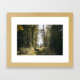 A Walk with Charlie Framed Art Print