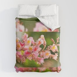 Aesculus red chestnut tree blossoms Comforters
