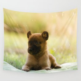 Malinois puppies in the soap blowing game Wall Tapestry