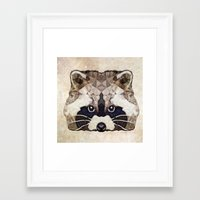 racoon Framed Art Prints featuring Racoon by Ancello