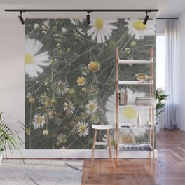 Daisies Wall Mural