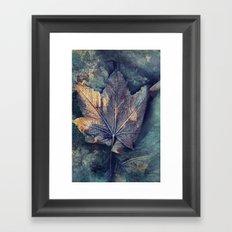 Frost Leave Framed Art Print