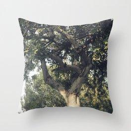 Carob tree Throw Pillow
