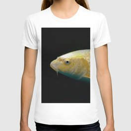 A lucky golden colored carp/Nishikigoi(Japanese Colored Carp) T-shirt