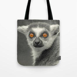 LEMUR PORTRAIT Tote Bag
