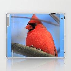 The Cardinal Portrait Laptop & iPad Skin