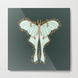 Matthew 6:20 - Bible verse moth illustration Metal Print