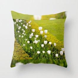 White tulips in buxus arrangement Throw Pillow
