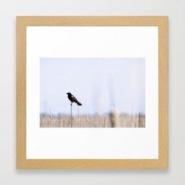 Bird Watch Framed Art Print