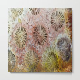 Indonesian Coral Metal Print