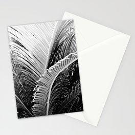 Palms monochrome II Stationery Cards