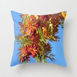 Fallbeauty/Rowan berries Throw Pillow