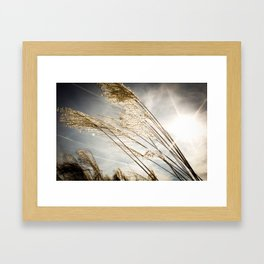 sunlight in the field Framed Art Print