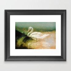 Forest Nature Animals - Night Swim Framed Art Print