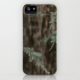 The Pine  iPhone Case