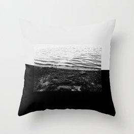 352 Throw Pillow