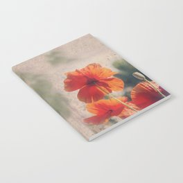 Red Poppies, Flowers Notebook