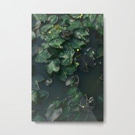 Water Lilies V Metal Print