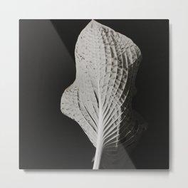 Leaf #1 Metal Print