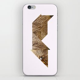CAPYBARA iPhone Skin