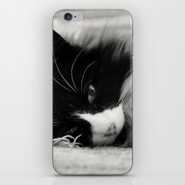 Black and White Cat iPhone Skin