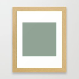 White Sage Framed Art Print