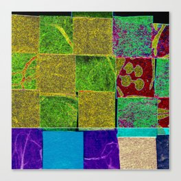Textured squares Canvas Print