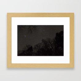 Stars from the Forest Floor Framed Art Print