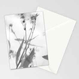 Herbes Folles Infra Stationery Cards