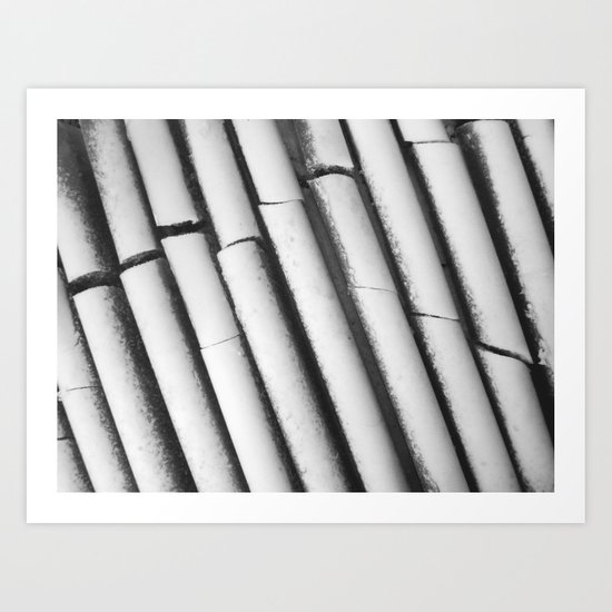 Ice. Ribs / 2012 Art Print