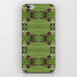 Chicago Geese 3 iPhone Skin