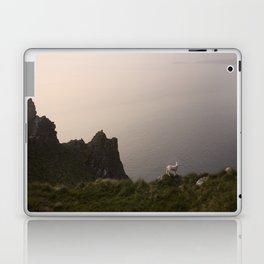 Little lambs Laptop & iPad Skin