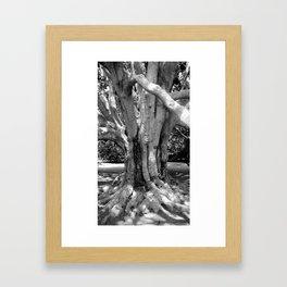 Westerly Framed Art Print