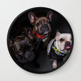 The French Bulldogs Wall Clock