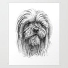 Lhassa Apso portrait G102 Art Print