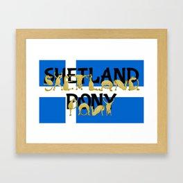 Shetland Pony Framed Art Print