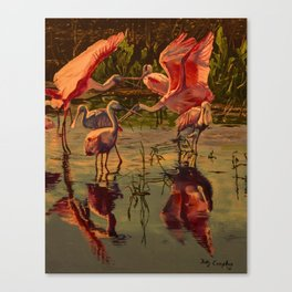 Spoonbill's At High Noon  Canvas Print