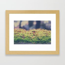 Fairy Moss Framed Art Print