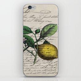 vintage Mediterranean summer fruit orchard citrus blossom yellow lemon iPhone Skin