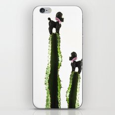 Poodle cacti iPhone & iPod Skin