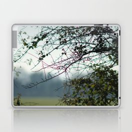 Bare branches Laptop & iPad Skin