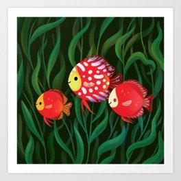 Red discus Art Print